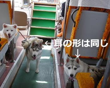 05.10伊勢鳥羽0026.JPG
