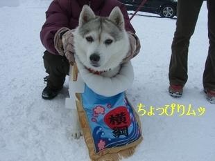 2006.2 高山わんパラ 241.jpg