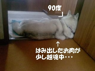 P2010_0813_150706.JPG