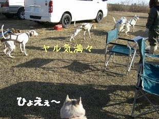 09.2合同錬0025.JPG
